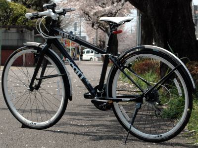 2010-04-11.jpg