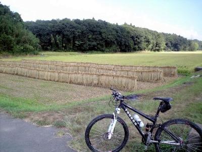 2010-09-01.jpg