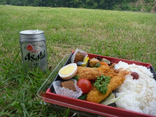 kamogawa itouzushi