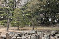 雪の徳島公園