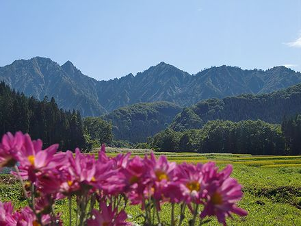 大源太キャニオンへ向う道からの景色