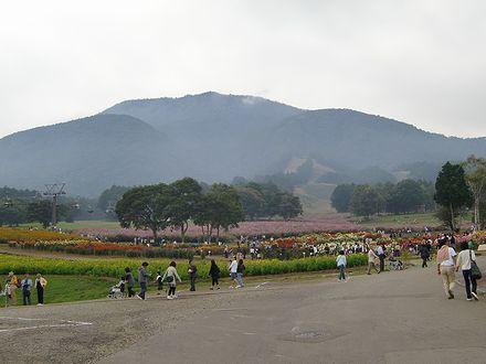 黒姫山と黒姫高原コスモス園
