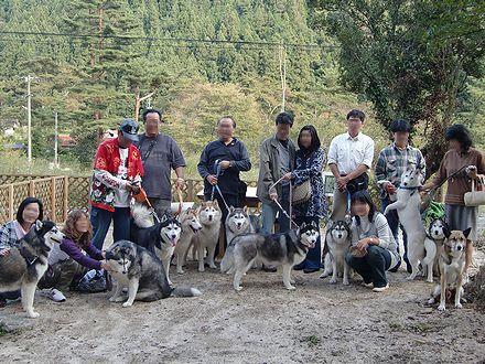 広島オフ会'09集合写真