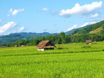 田舎の原風景イメージ②@ルアンナムター