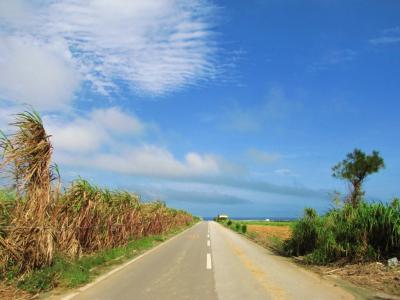 空と海へ続く道@石垣島