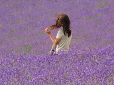 ラベンダー畑でモデル撮影①@ファーム富田