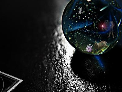 coll-microcosmos-11.jpg
