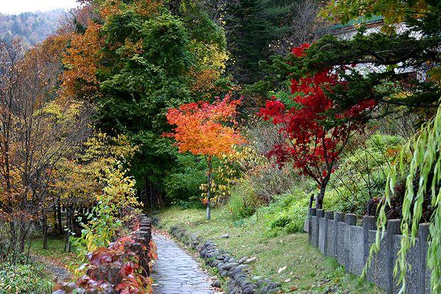 10月19日定山渓2