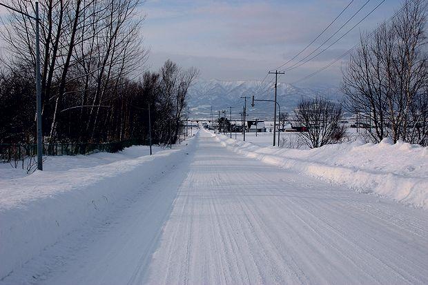ウオーキングの道