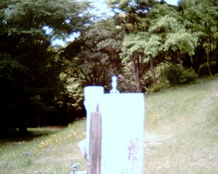 20100515_13.jpg