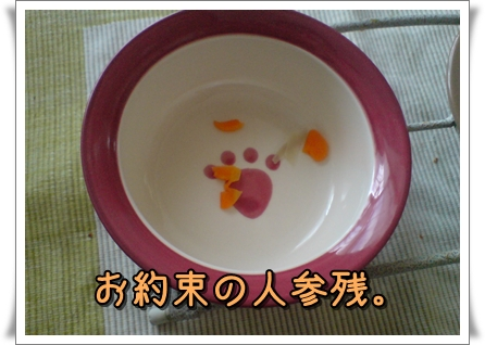 20110101132220p.jpg