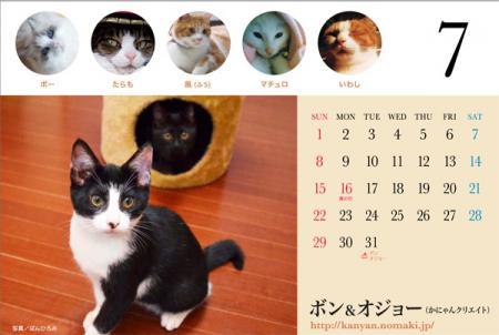 2012cale_debue.jpg