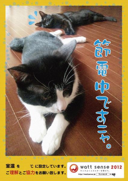 2012 8月節電ポスター