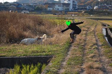20101127042.jpg