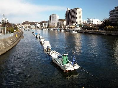 境川20111225