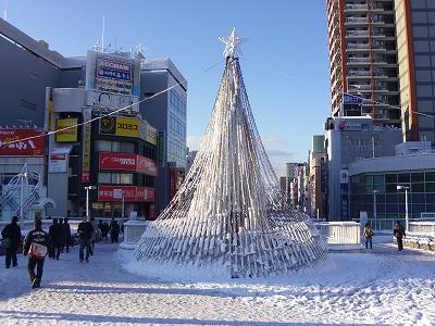 雪の朝2-20120124