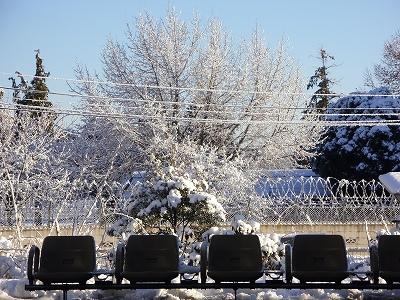 雪の朝3-20120124