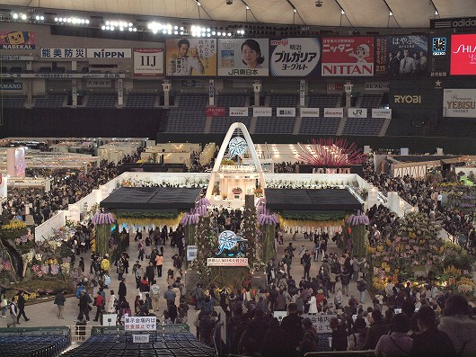 世界らん展20120219