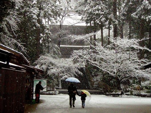 円覚寺三門前20120229