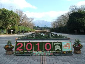 10吉野公園