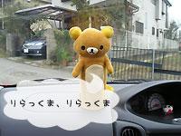 2010_2_12_12.jpg