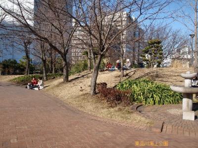 20110113_02.jpg