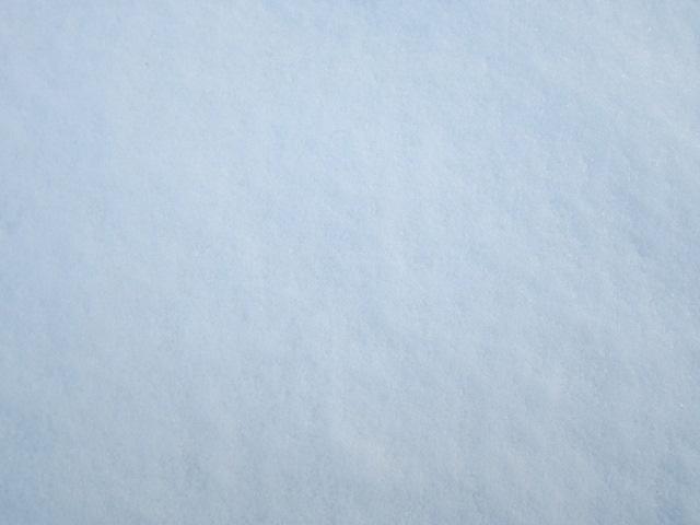 新雪 東北某所