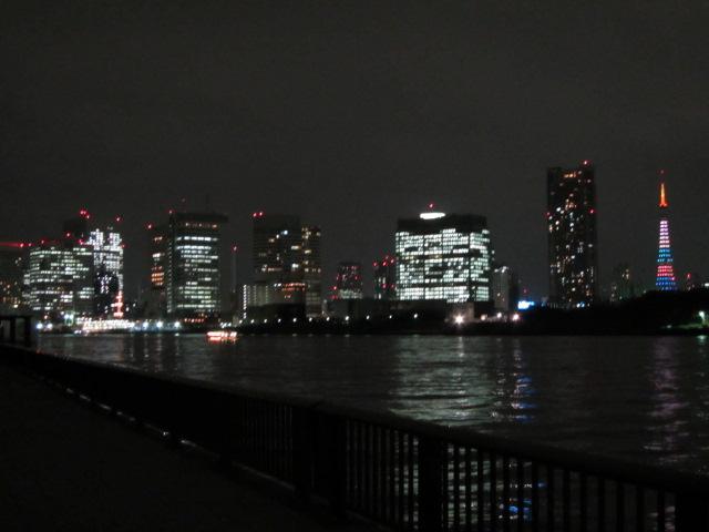 数時間限定の嵐色の東京タワーがみえます