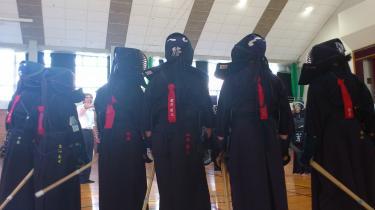 シマヘビ軍団