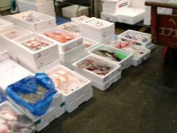 市場魚CIMG2868