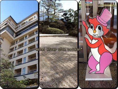 cats1_20110306221614.jpg