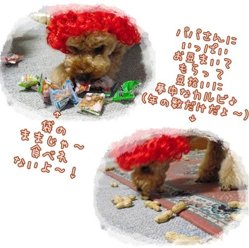 cats5_20100206224308.jpg