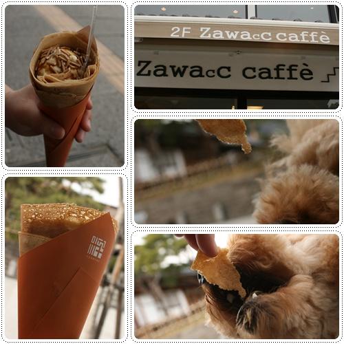 cats8_20100409234625.jpg