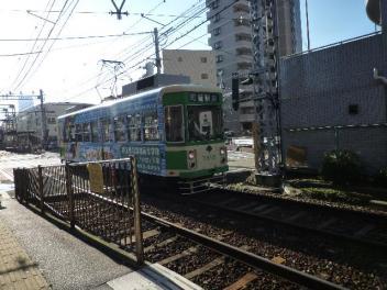 P1010065.jpg
