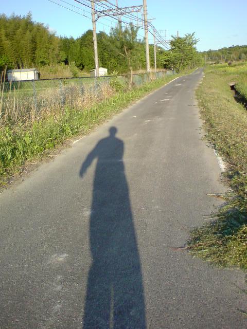shadow124