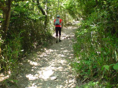 trail43