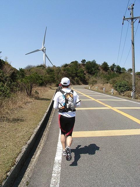 wind_farm2