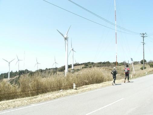 wind_farm4