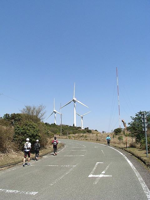 wind_farm7