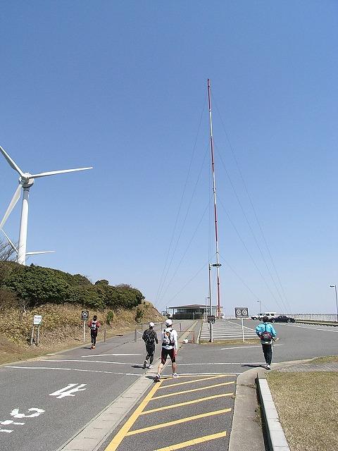 wind\farm8