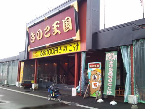 kinoko_tengoku