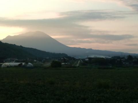 morning_daisen