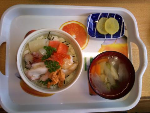 seafood_owl