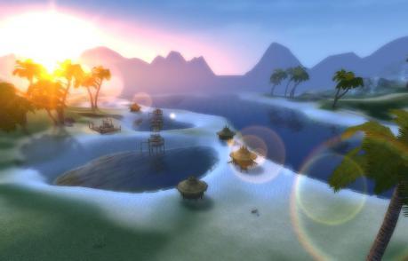 椰子の群生地