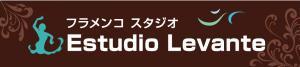 Estudio-Levante300_convert_20120923212704.jpg