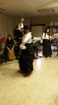 flamenco_191900_convert_20111219004922.jpg