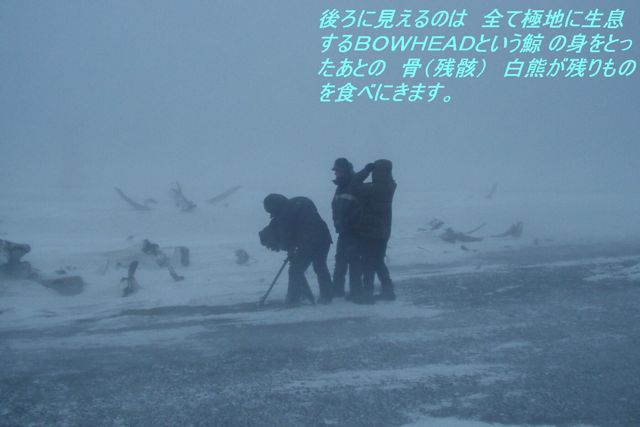 v10  ~ 北極海 0401