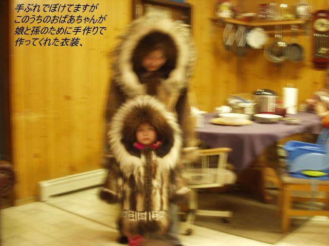 v30 コピー ~ 北極海 063