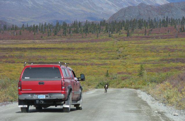 015 Alaska 275