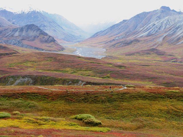 027 Alaska 410